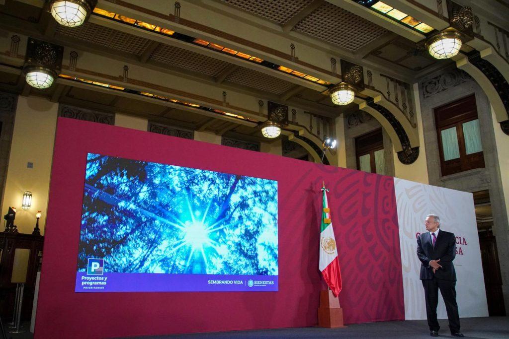 'Sembrando Vida', el programa más grande de creación de empleos en la historia: presidente AMLO