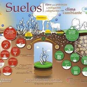 Detengamos la erosión del suelo, salvemos nuestro futuro