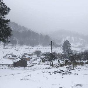 Llega frente frió 39, proveen caída de nieve en norte del país